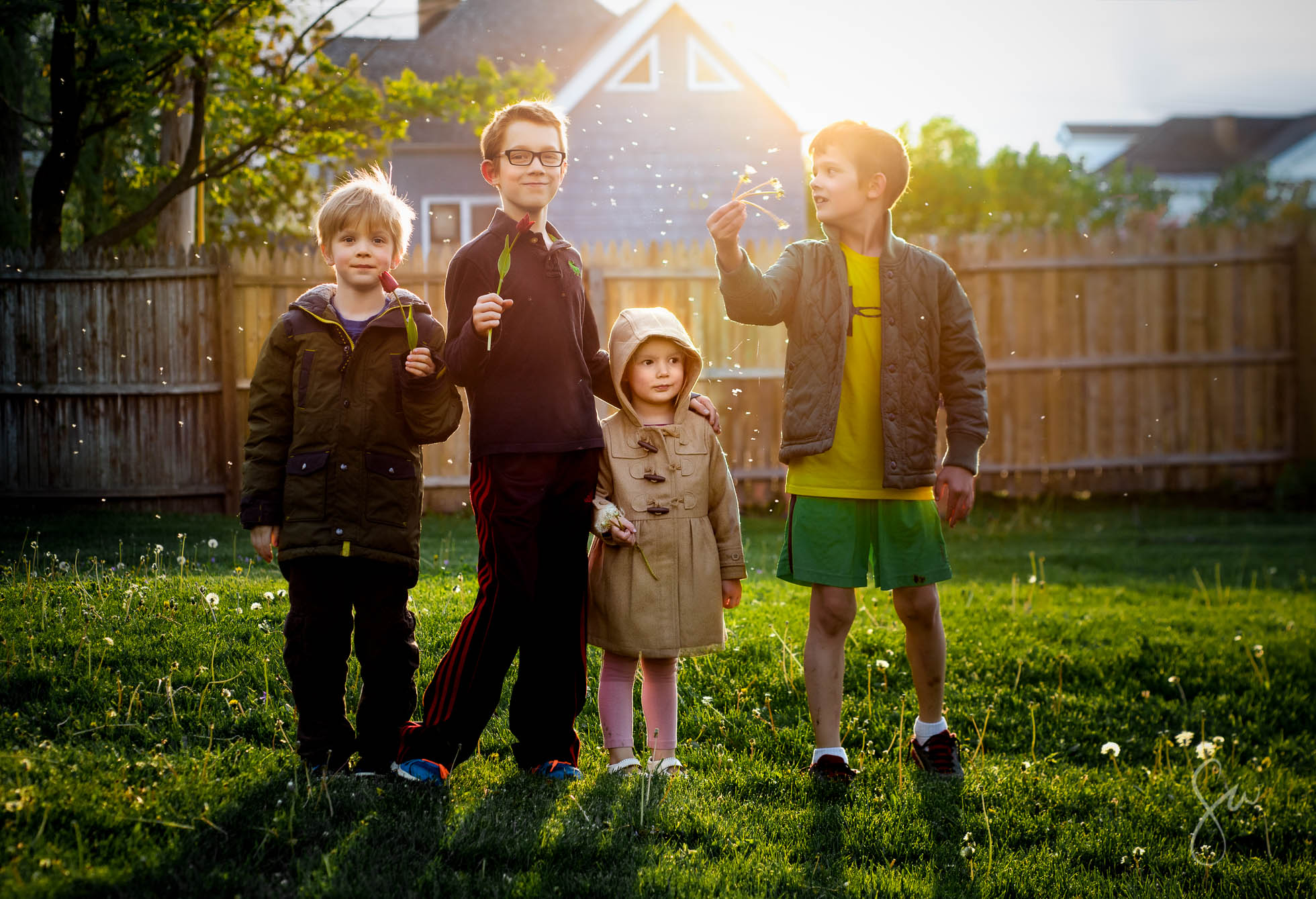 Children-Playing-with-Dandelions-in-the-Backyard-and-Blowing-Seeds-that-Look-Like-Snow-in-Backlighting-at-Golden-Hour--2
