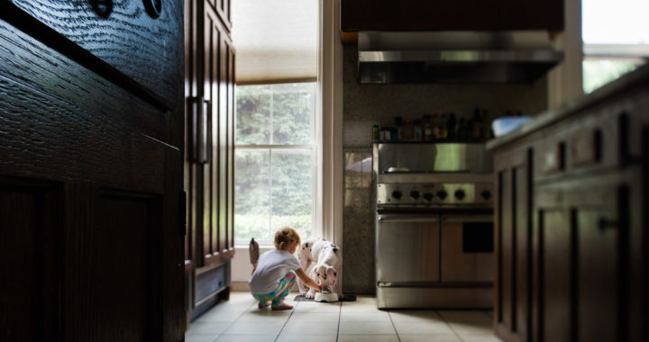 Little-Girl-Feeding-Harlequin-Great-Dane-Puppy-in-Kitchen-with-Pretty-Natural-Light-by-Sarah-Wilkerson-0029