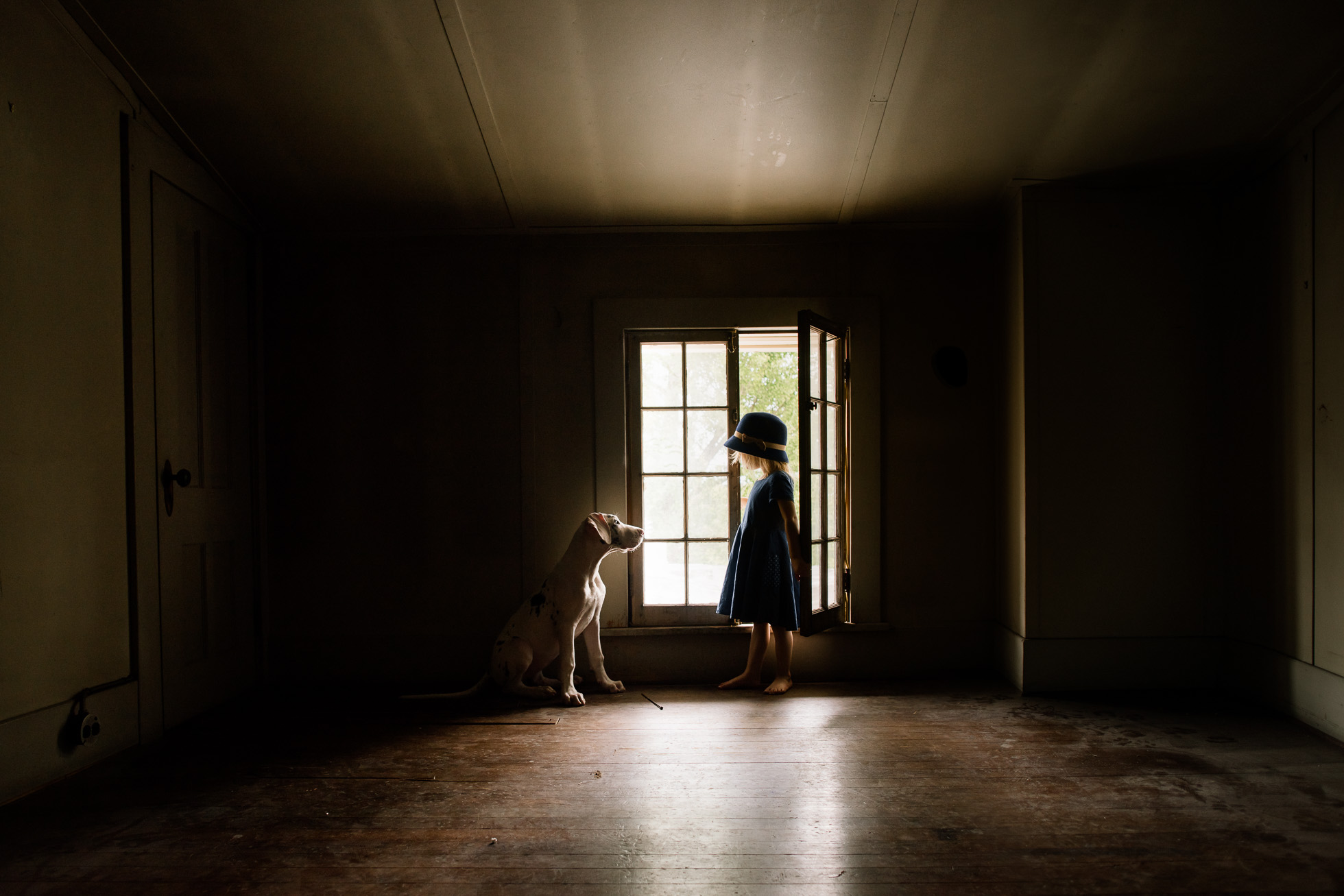 little-girl-with-old-fashioned-hat-standing-in-window-light-of-spooky-attic-with-harlequin-great-dane-puppy-by-sarah-wilkerson