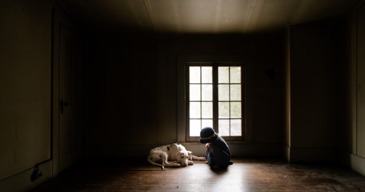 little-girl-with-old-fashioned-hat-standing-in-window-light-of-spooky-attic-with-harlequin-great-dane-puppy-by-sarah-wilkerson-0987