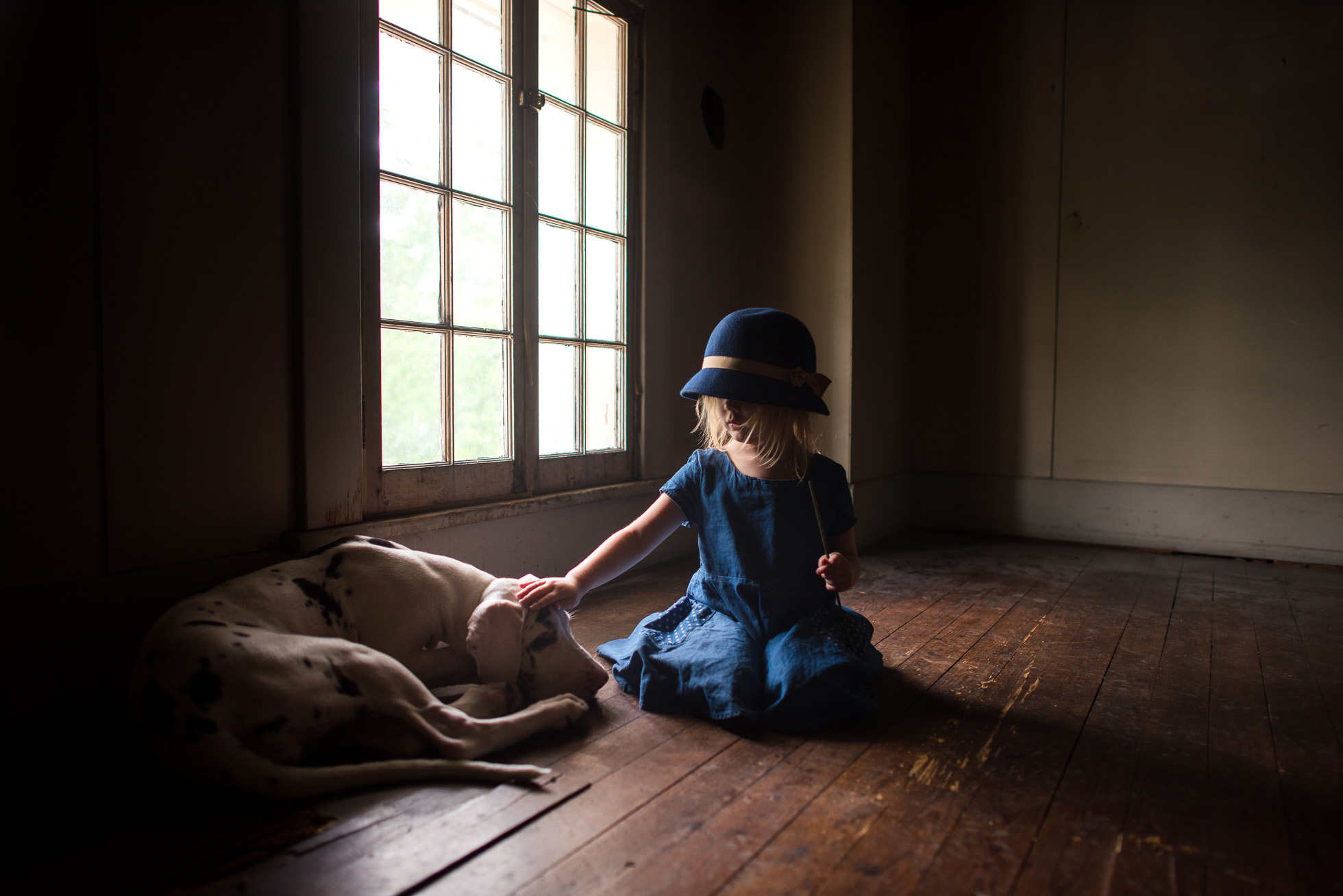 little-girl-with-old-fashioned-hat-standing-in-window-light-of-spooky-attic-with-harlequin-great-dane-puppy-by-sarah-wilkerson-0990