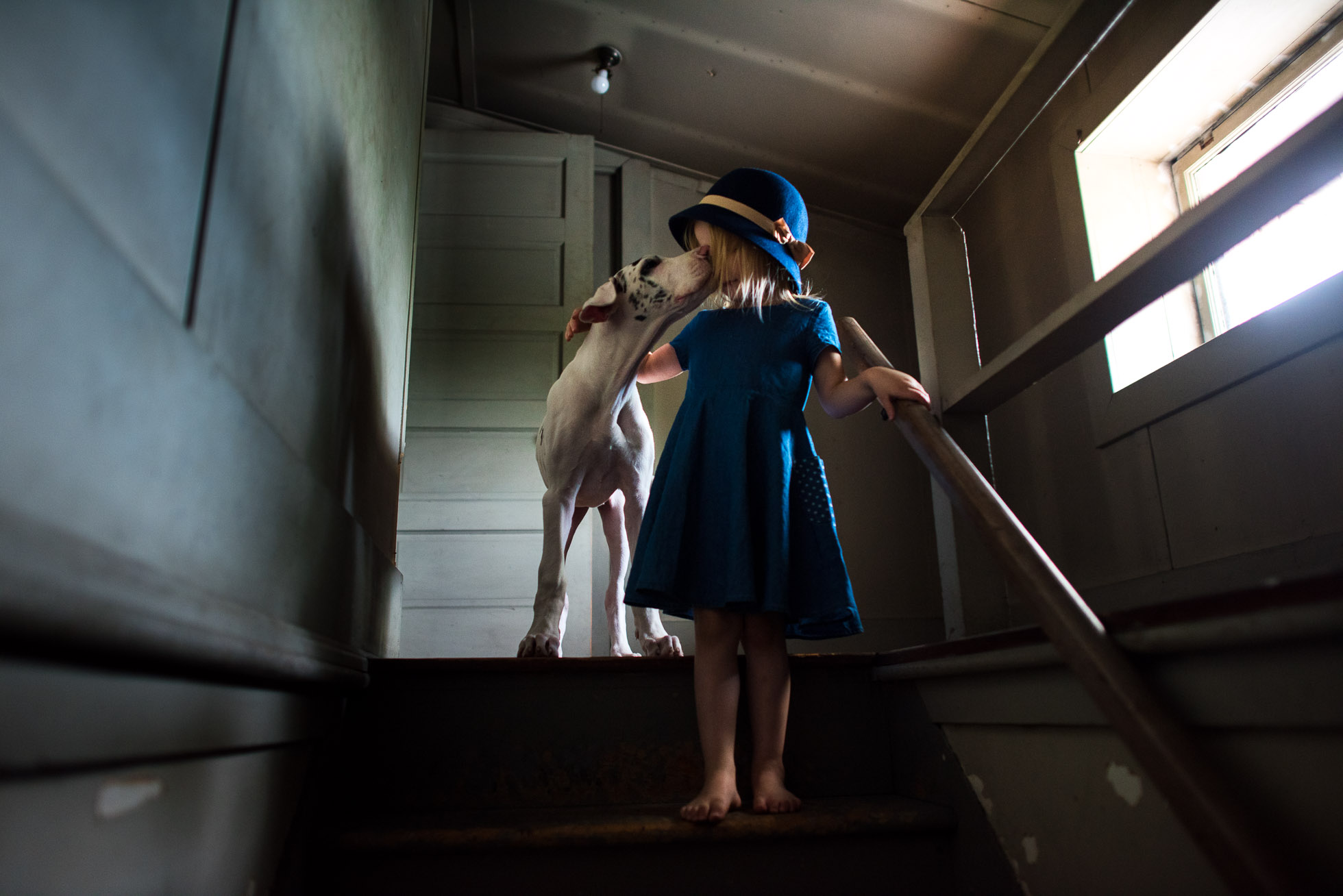 little-girl-with-old-fashioned-hat-standing-in-window-light-of-spooky-attic-with-harlequin-great-dane-puppy-by-sarah-wilkerson-1022