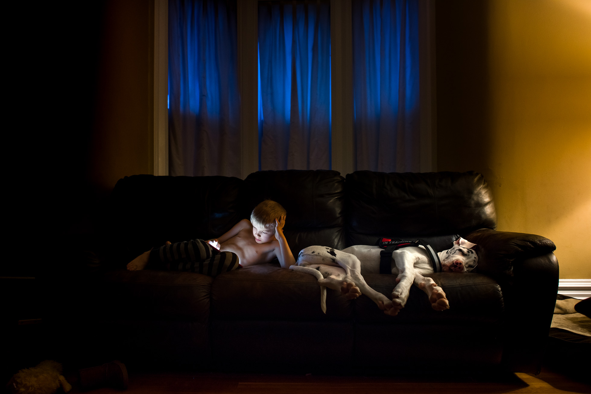 yellow-blue-mixed-lighting-in-candid-low-light-photograph-of-little-boy-with-ipad-and-harlequin-great-dane-sleeping-by-sarah-wilkerson-4983